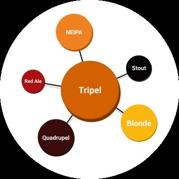 Voorbeeld van een smaakprofiel gegenereerd aan de hand van een Untappd profiel. Het smaakprofiel toont aan dat de betreffende persoon van tripels, quadrupel, blonde en NEIPA houdt.
